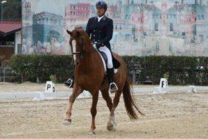 Complimenti a Mattia Maruffi del Riding Club Mentana per la medaglia d'argento al campionato di dressage centro meridionale categoria seniores esperti!